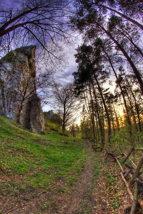 Zamek Morsko (Bąkowiec)