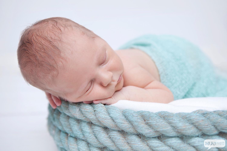 fotografia noworodkowa mysłowice