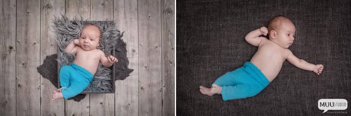 fotografia niemowlęca śląsk