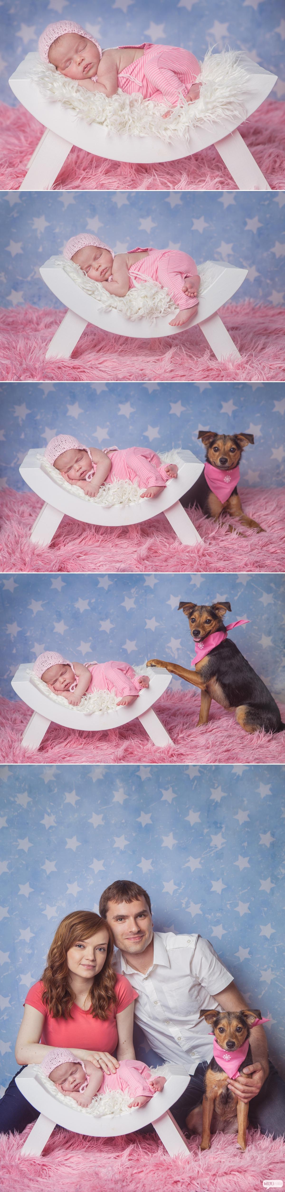 zdjęcia noworodka ze zwierzakiem