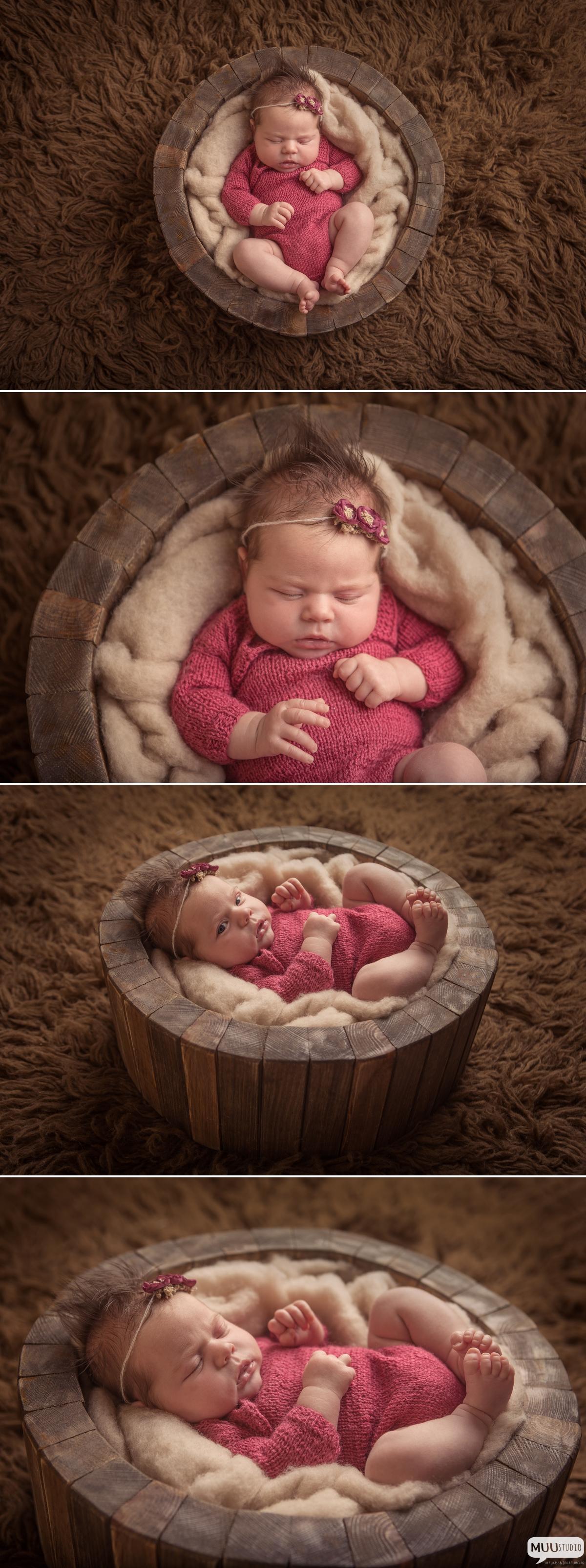 zdjęcia noworodków wolbrom
