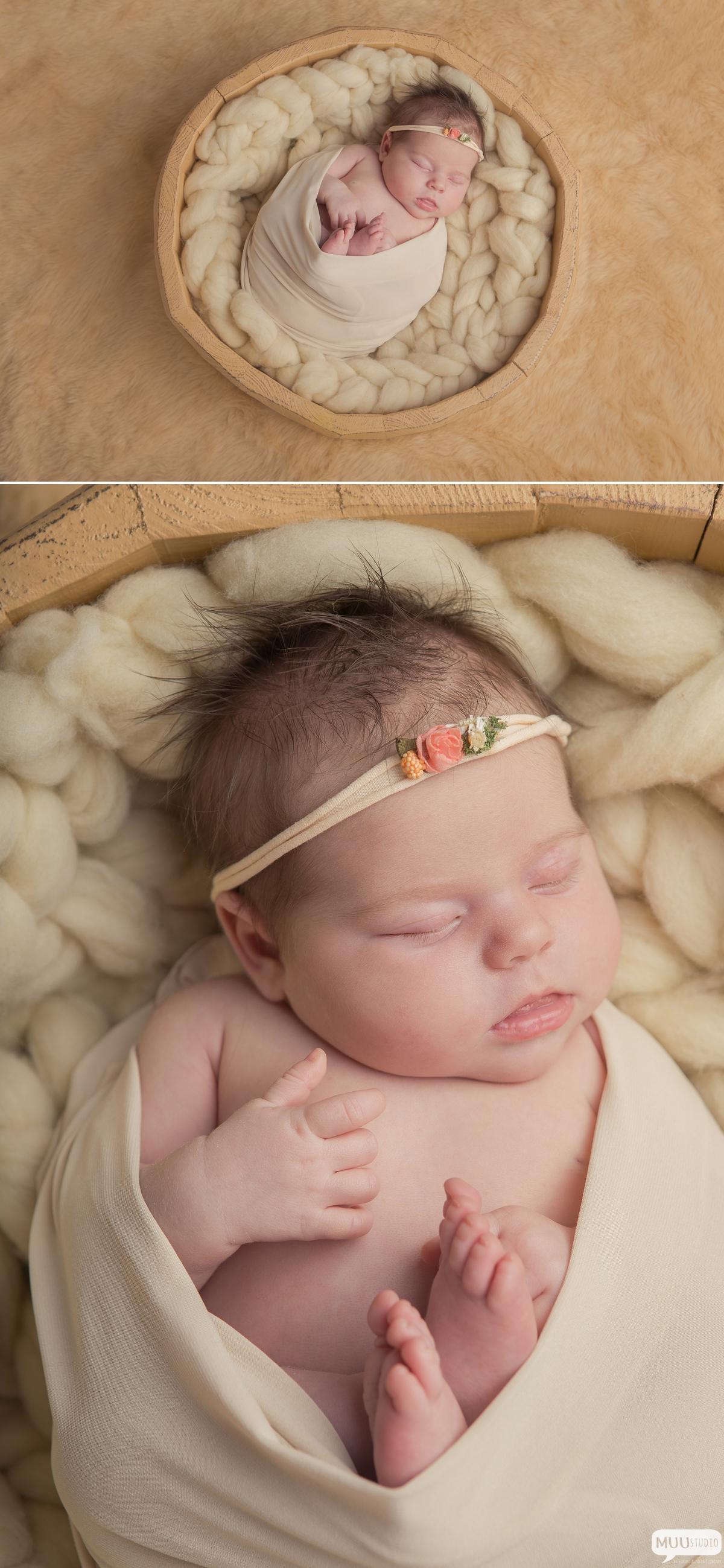 zdjęcia noworodków katowice