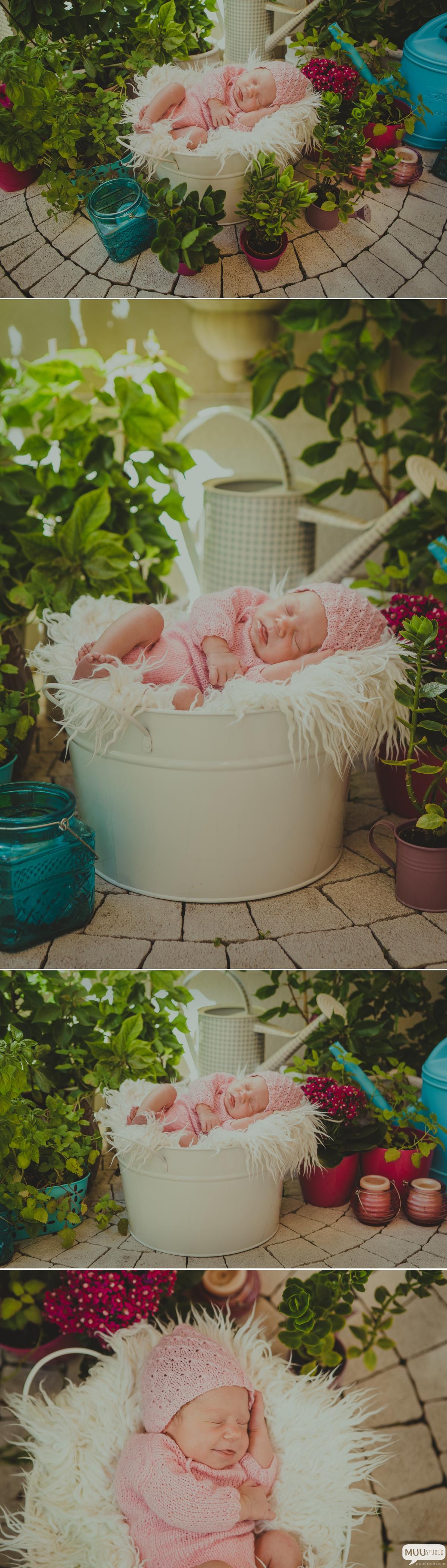 zdjęcia noworodka w plenerze