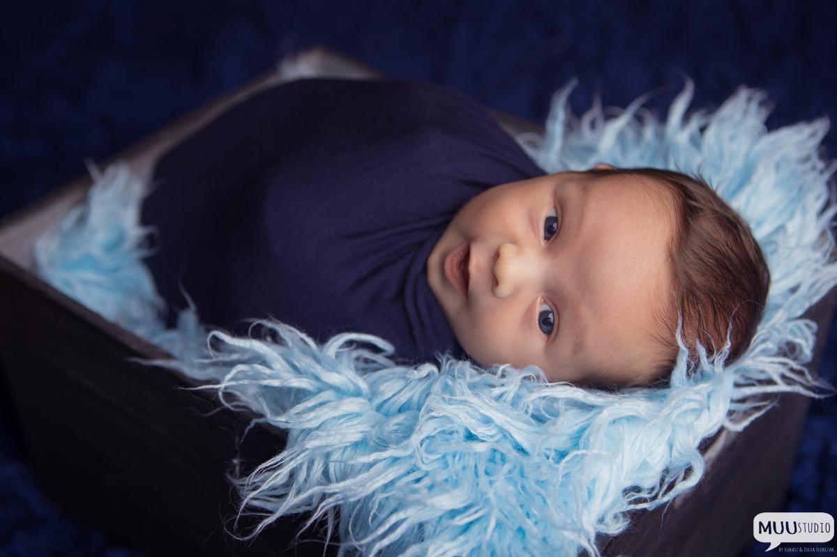 zdjęcia noworodkowe olkusz