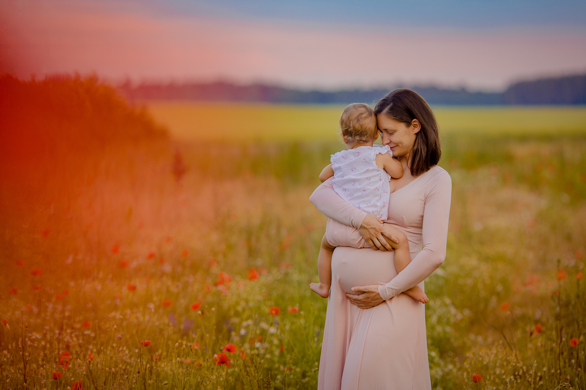 Bajkowa sesja ciążowa na polu makowym i chabrowym